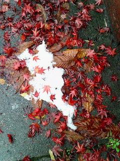 11/21紅葉と雪